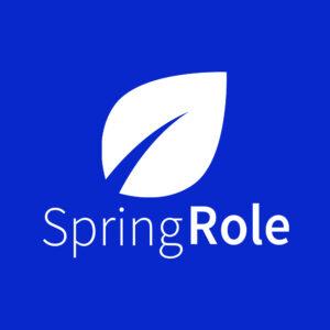SpringRole internship
